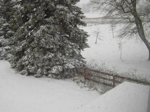 snow-dec-07-b.jpg