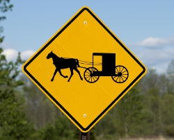 Amish-buggy-How-To